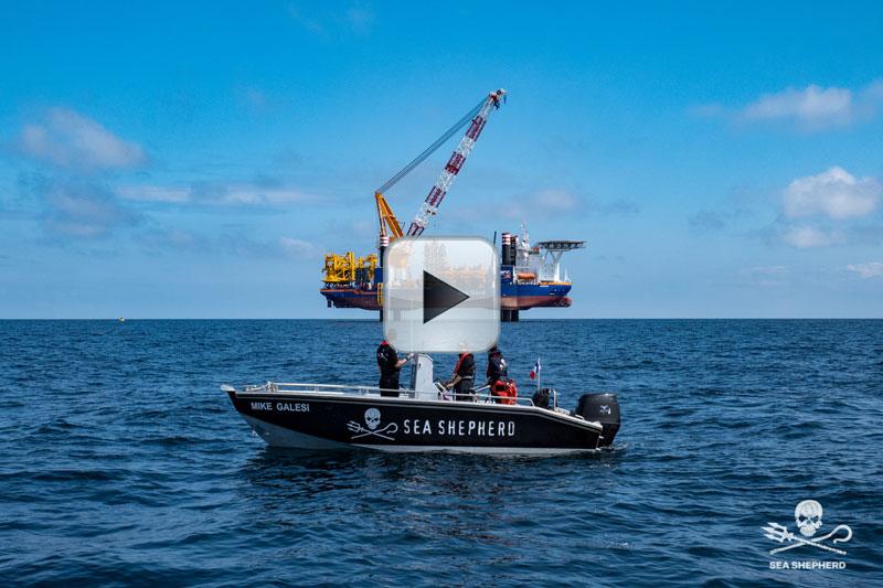 image: Sea Shepherd France